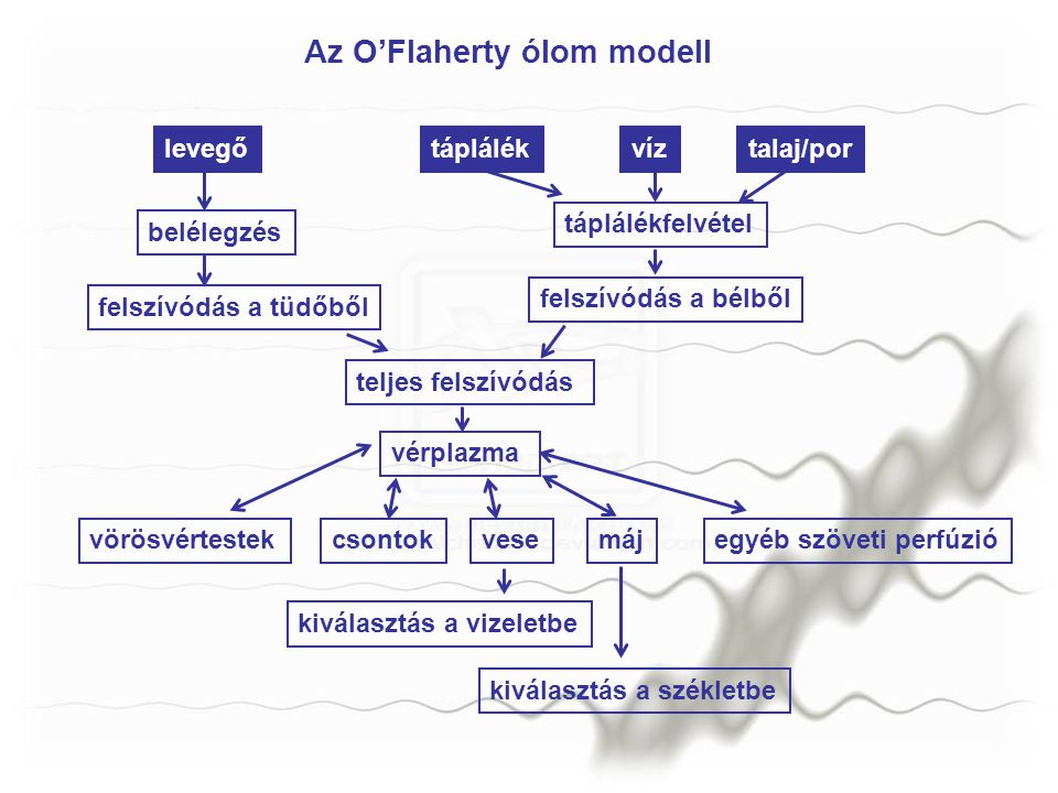 Az O'Flaherty ólom modell