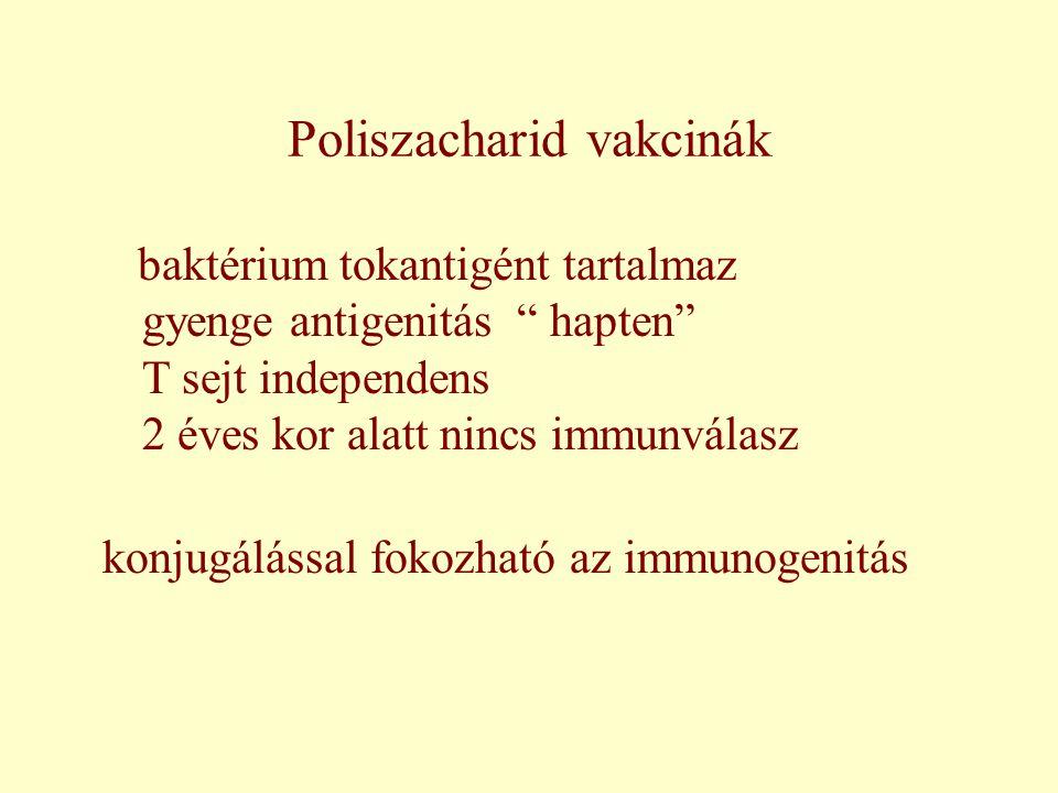 Poliszacharid vakcinák