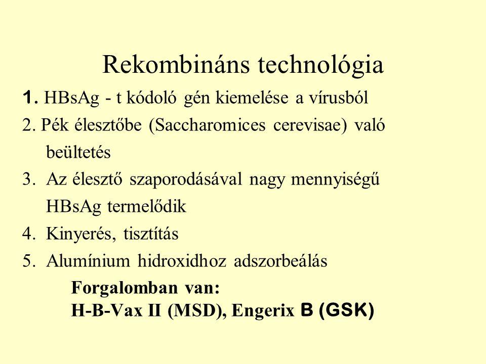Rekombináns technológia