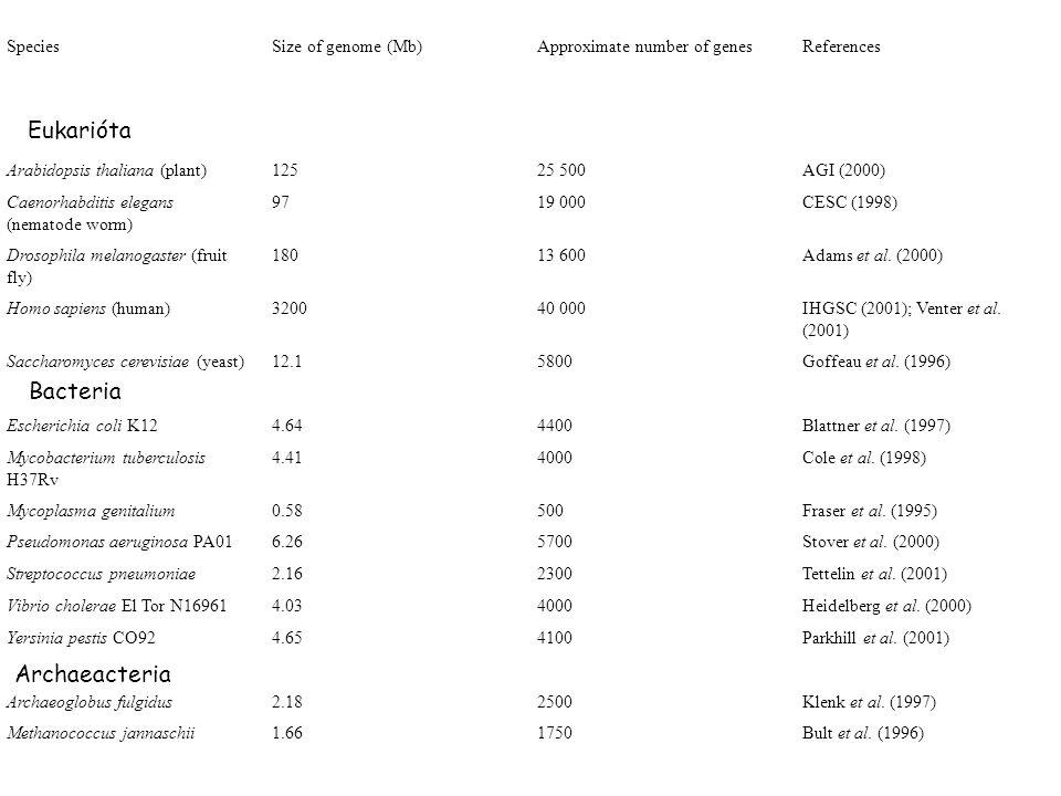 Eukarióta Bacteria Archaeacteria Species Size of genome (Mb)