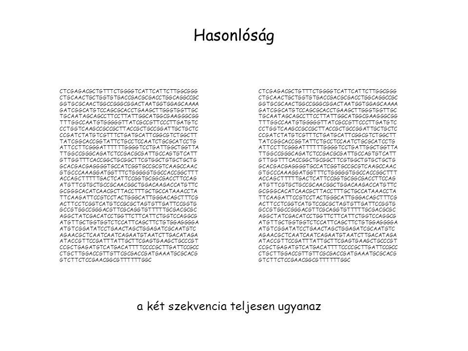 Hasonlóság a két szekvencia teljesen ugyanaz