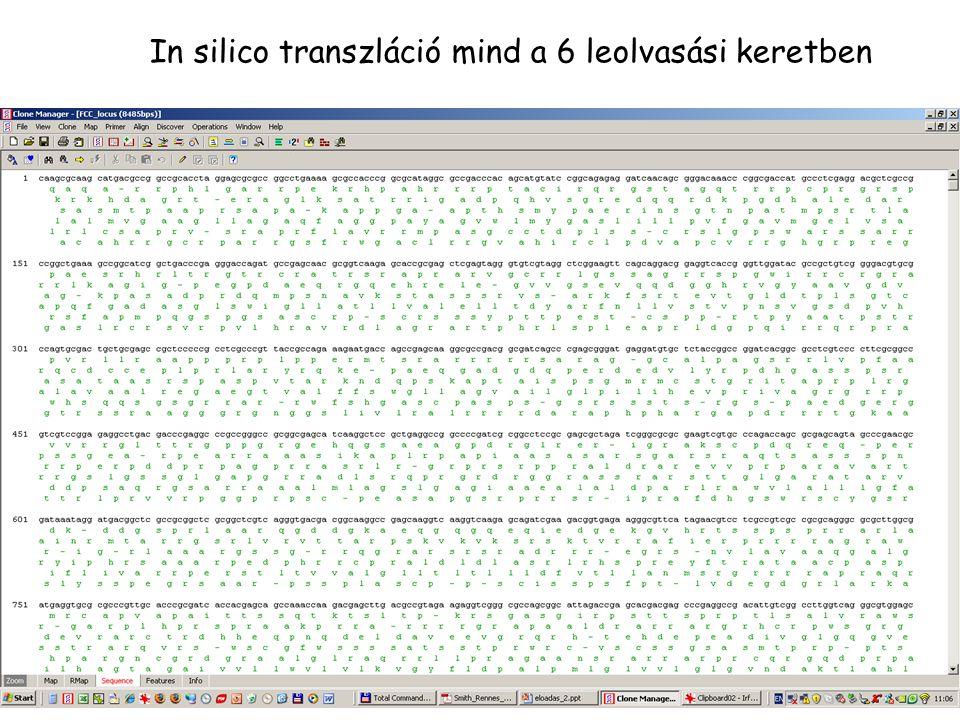 In silico transzláció mind a 6 leolvasási keretben