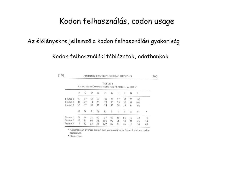 Kodon felhasználás, codon usage