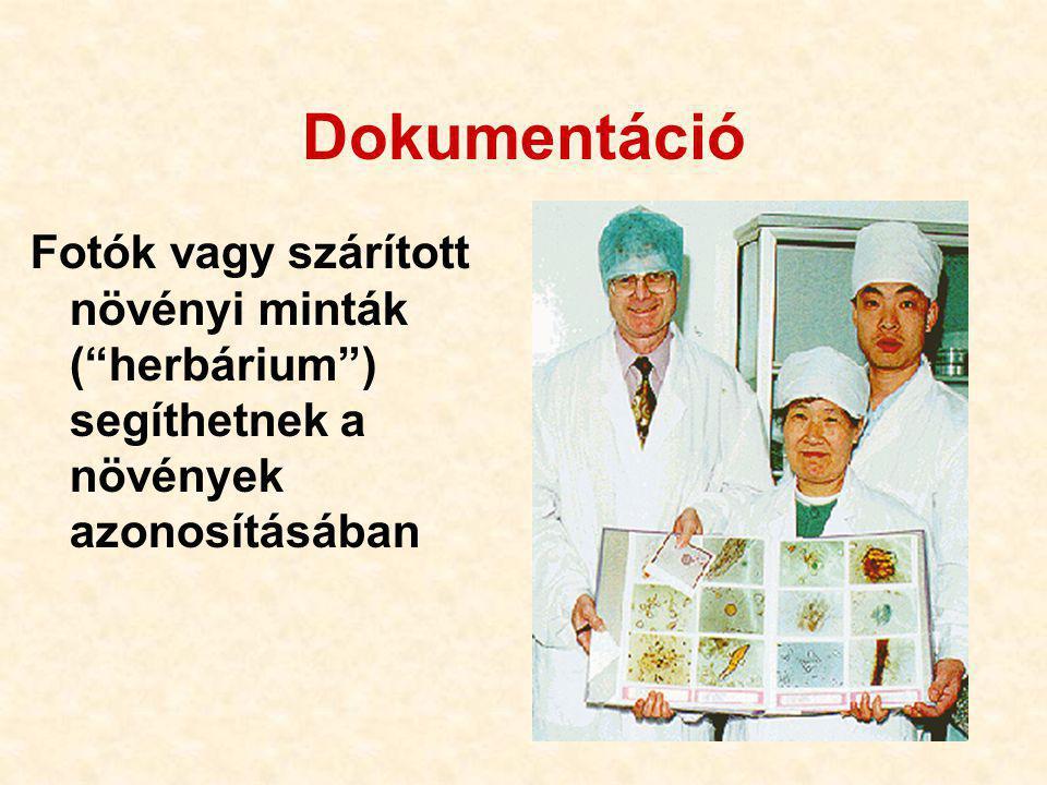 Dokumentáció Fotók vagy szárított növényi minták ( herbárium ) segíthetnek a növények azonosításában.