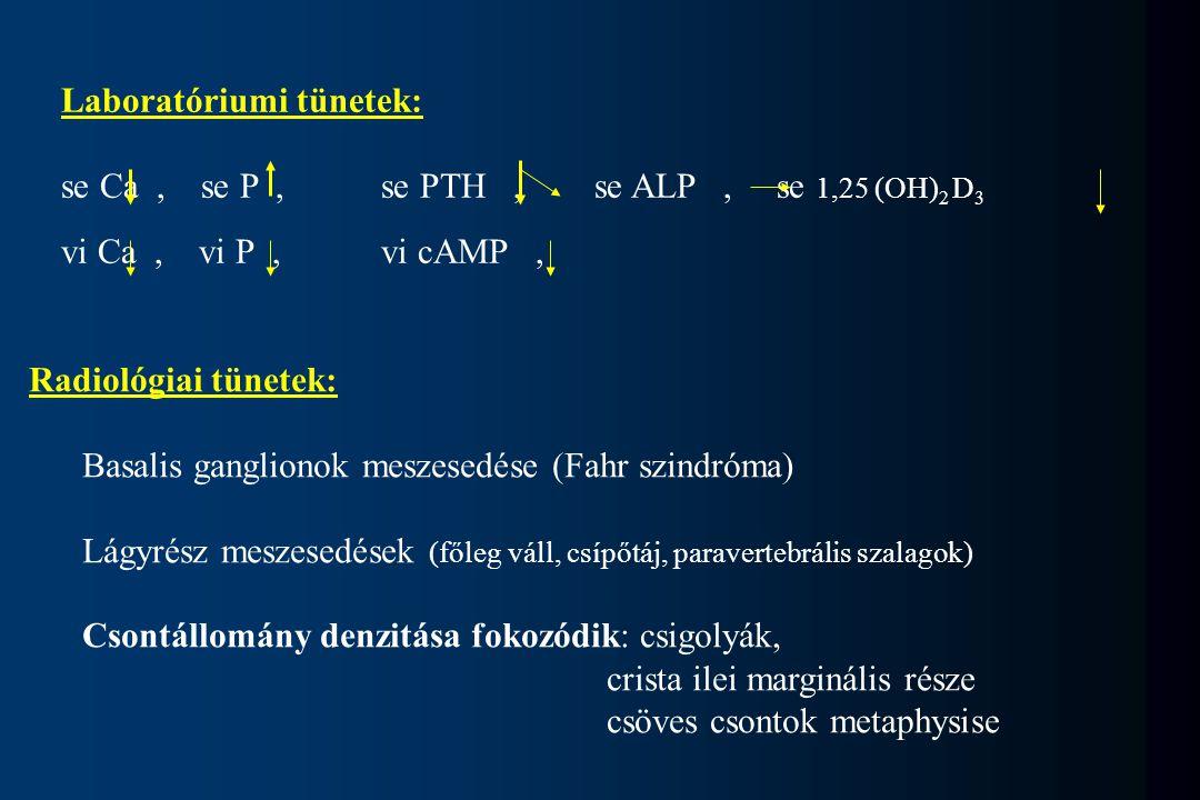 Laboratóriumi tünetek: