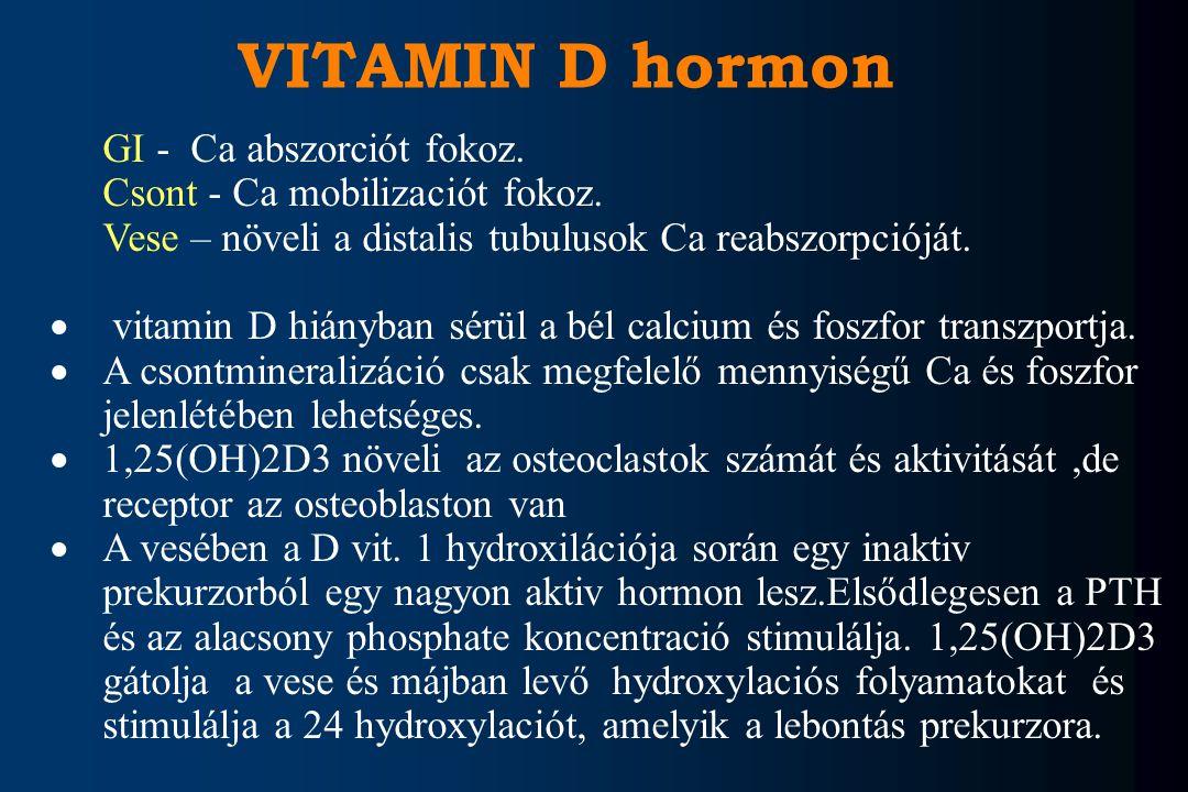 VITAMIN D hormon GI - Ca abszorciót fokoz.