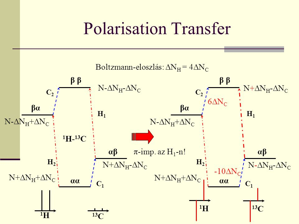 Polarisation Transfer