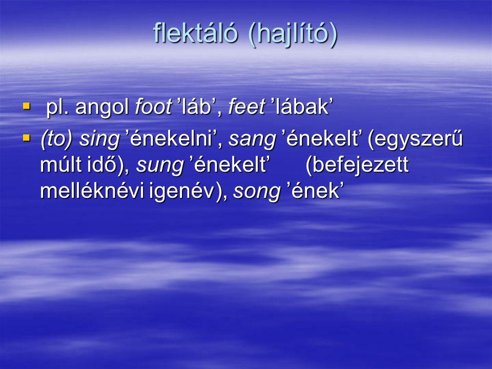 flektáló (hajlító) pl. angol foot 'láb', feet 'lábak'