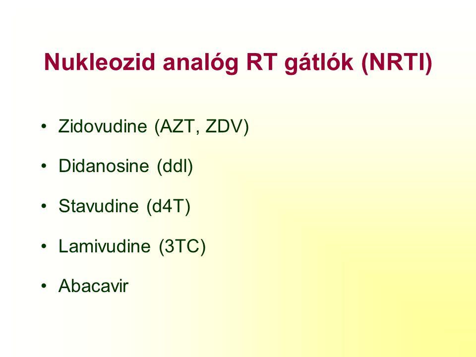 Nukleozid analóg RT gátlók (NRTI)