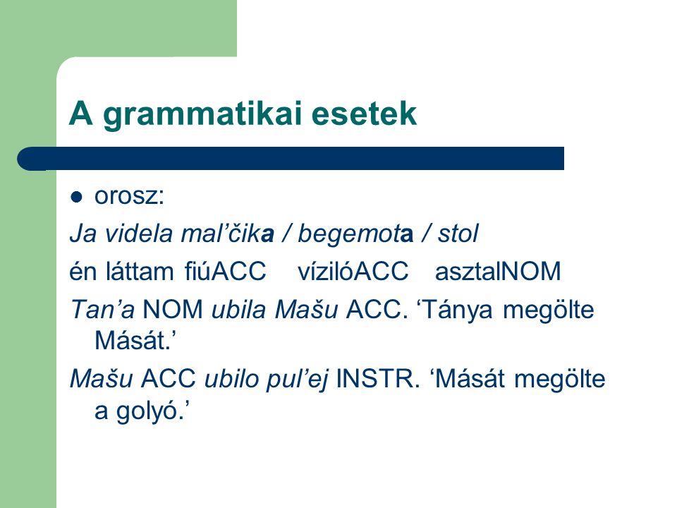 A grammatikai esetek orosz: Ja videla mal'čika / begemota / stol