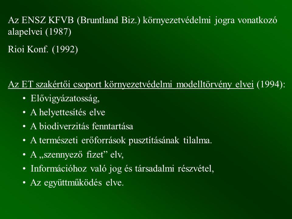 Az ENSZ KFVB (Bruntland Biz