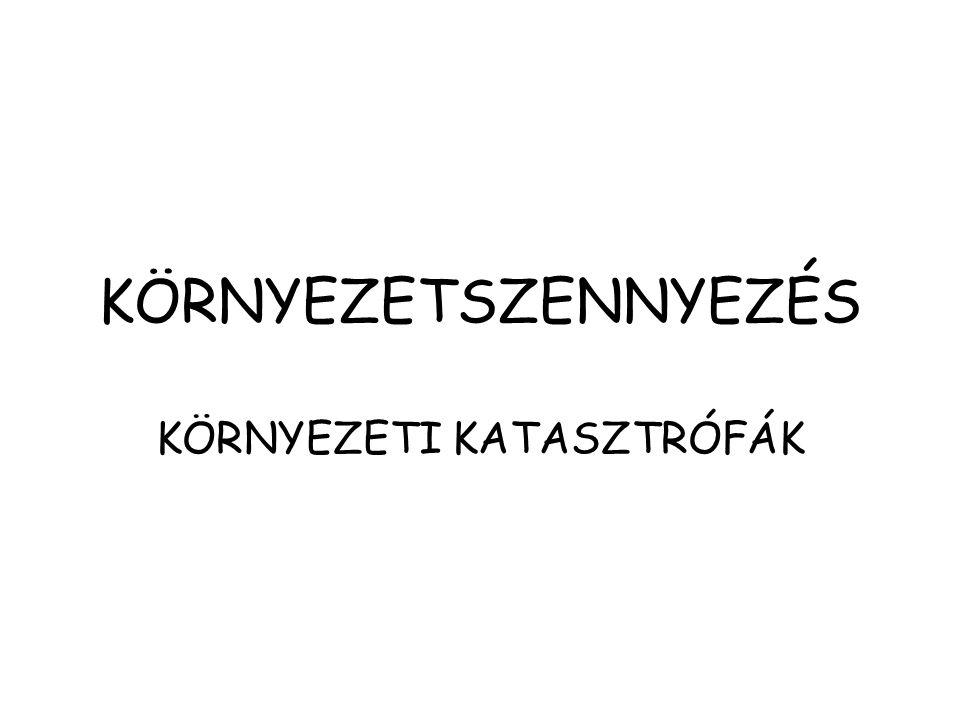 KÖRNYEZETI KATASZTRÓFÁK