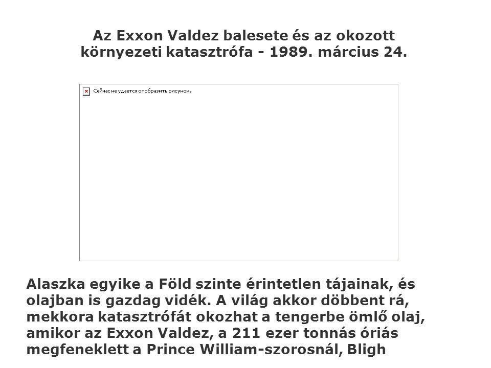 Az Exxon Valdez balesete és az okozott környezeti katasztrófa - 1989