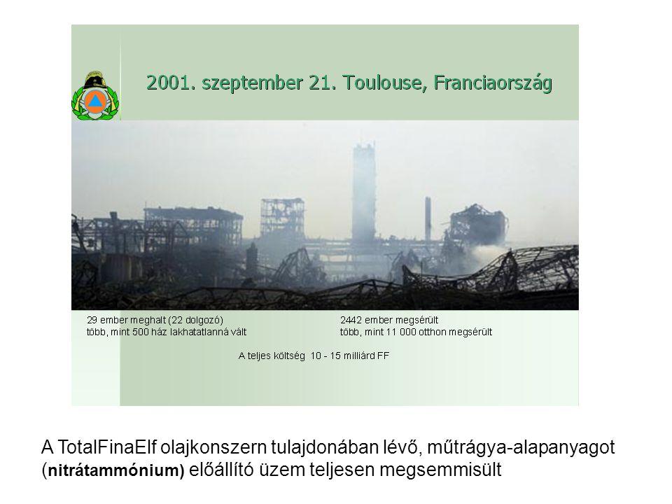 A TotalFinaElf olajkonszern tulajdonában lévő, műtrágya-alapanyagot (nitrátammónium) előállító üzem teljesen megsemmisült