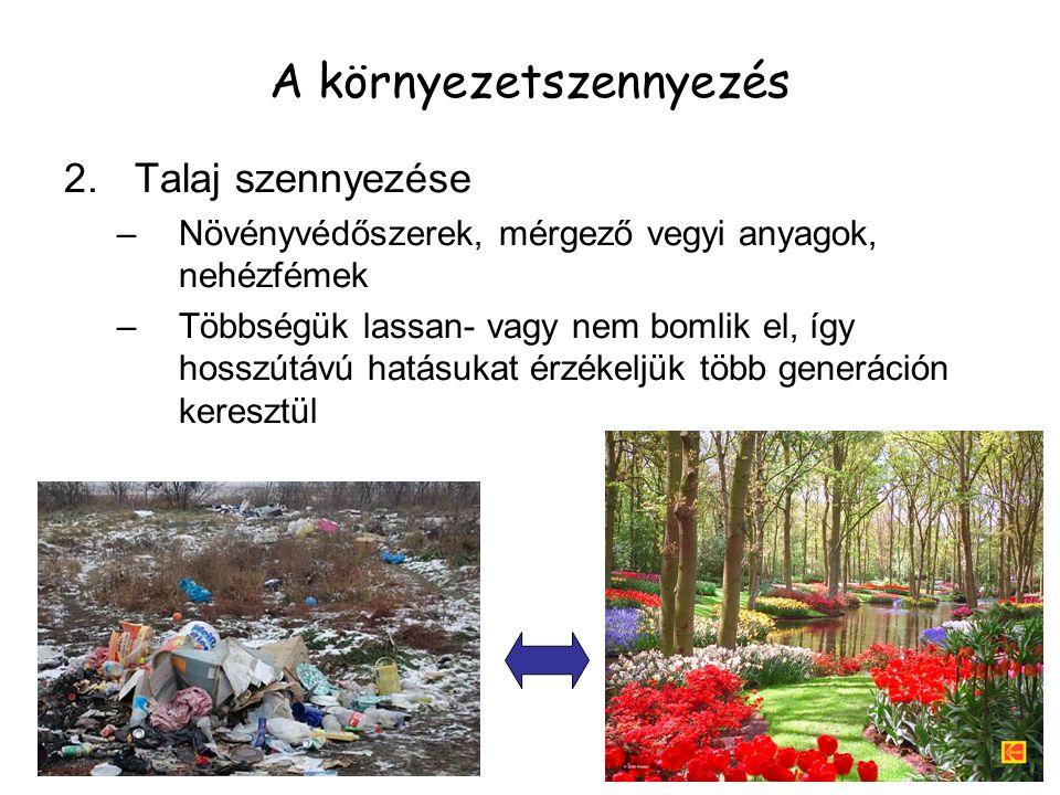 A környezetszennyezés