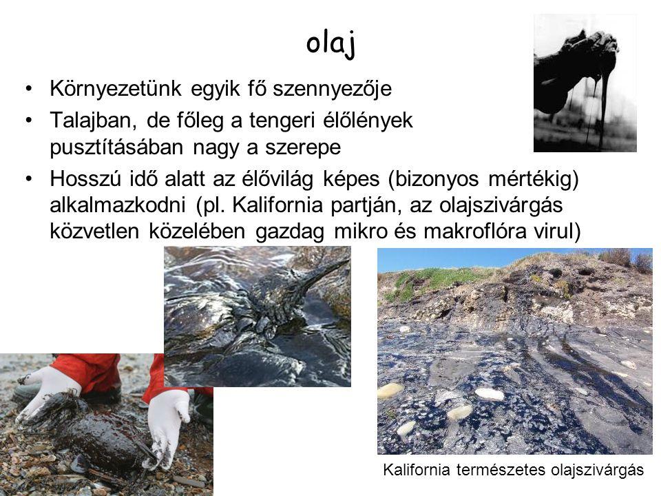 olaj Környezetünk egyik fő szennyezője