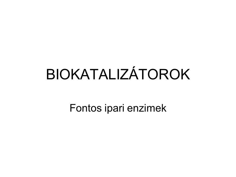 BIOKATALIZÁTOROK Fontos ipari enzimek