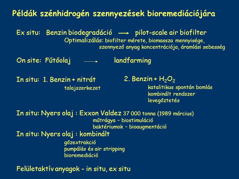 Példák szénhidrogén szennyezések bioremediációjára