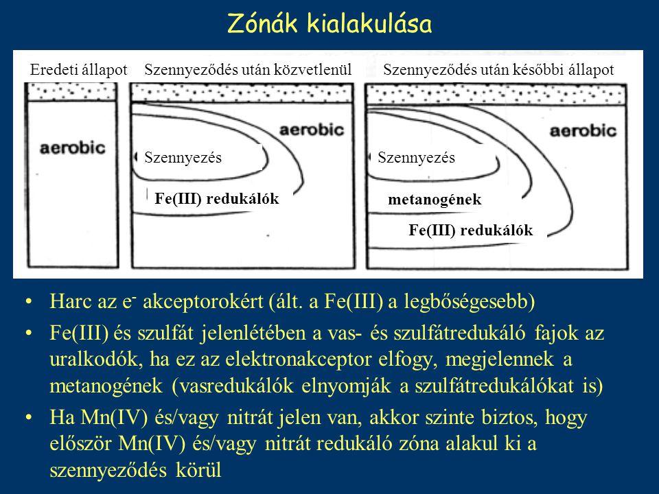 Zónák kialakulása Szennyeződés után későbbi állapot. Eredeti állapot. Szennyeződés után közvetlenül.