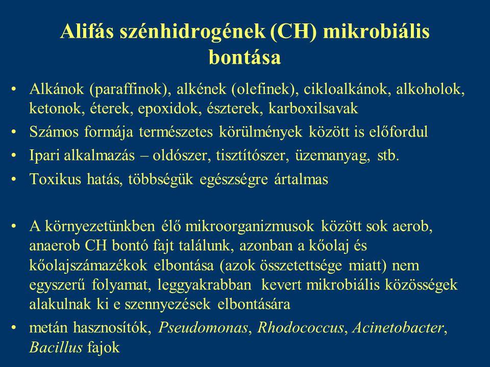 Alifás szénhidrogének (CH) mikrobiális bontása