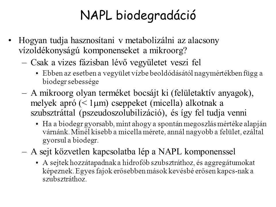 NAPL biodegradáció Hogyan tudja hasznosítani v metabolizálni az alacsony vízoldékonyságú komponenseket a mikroorg