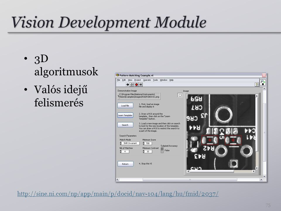 Vision Development Module