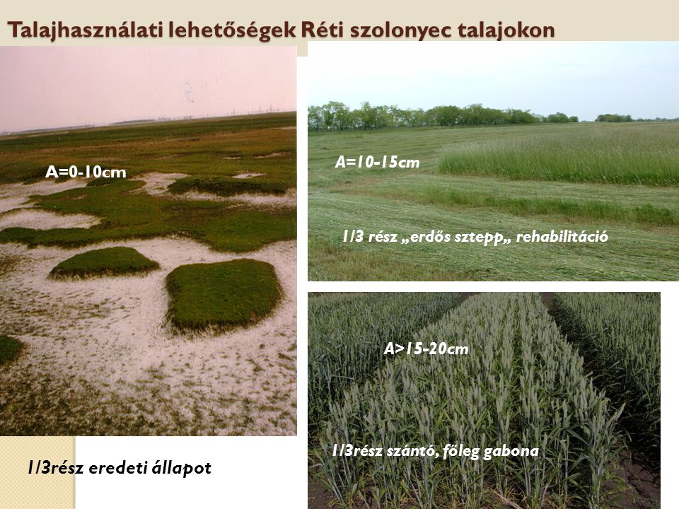 Talajhasználati lehetőségek Réti szolonyec talajokon