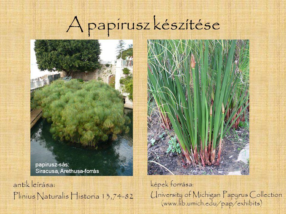 A papirusz készítése antik leírása: