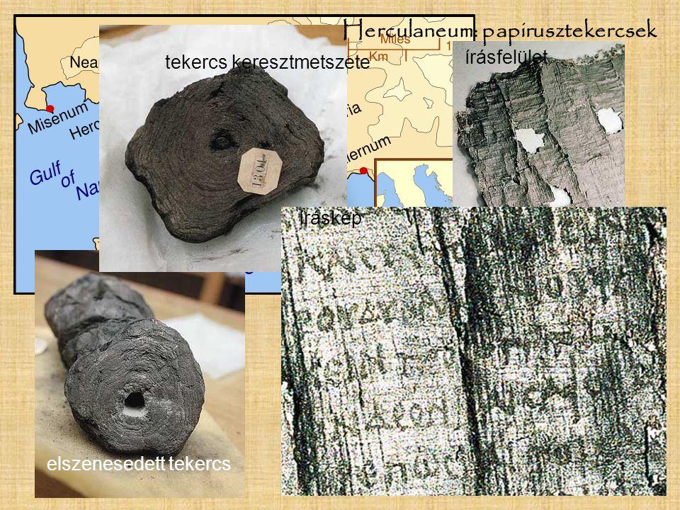 Herculaneum: papirusztekercsek