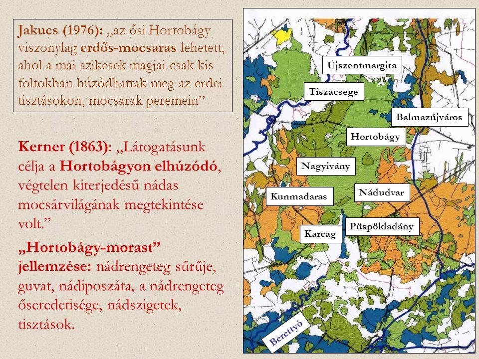 """Jakucs (1976): """"az ősi Hortobágy viszonylag erdős-mocsaras lehetett, ahol a mai szikesek magjai csak kis foltokban húzódhattak meg az erdei tisztásokon, mocsarak peremein"""