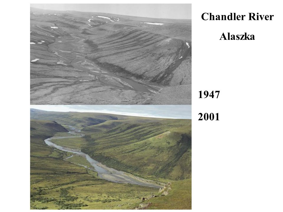 Chandler River Alaszka 1947 2001