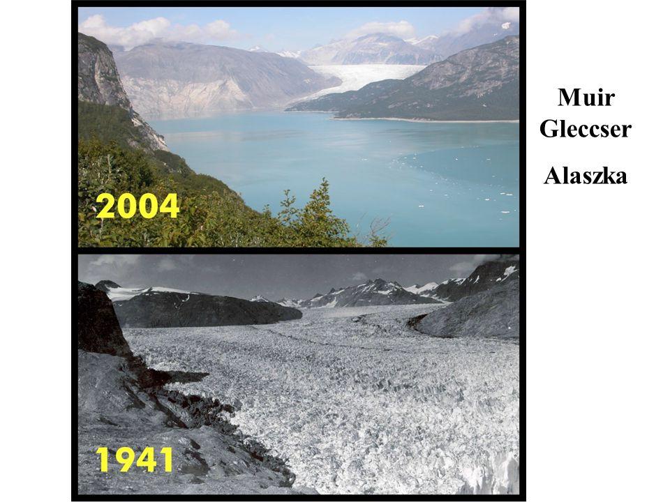 Muir Gleccser Alaszka