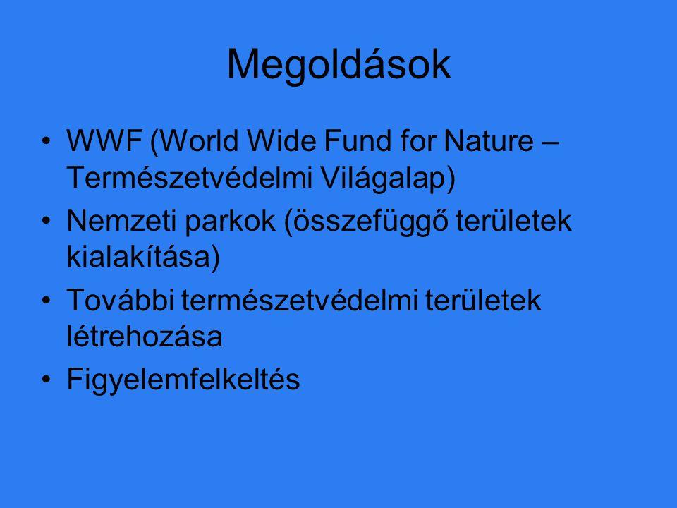 Megoldások WWF (World Wide Fund for Nature – Természetvédelmi Világalap) Nemzeti parkok (összefüggő területek kialakítása)