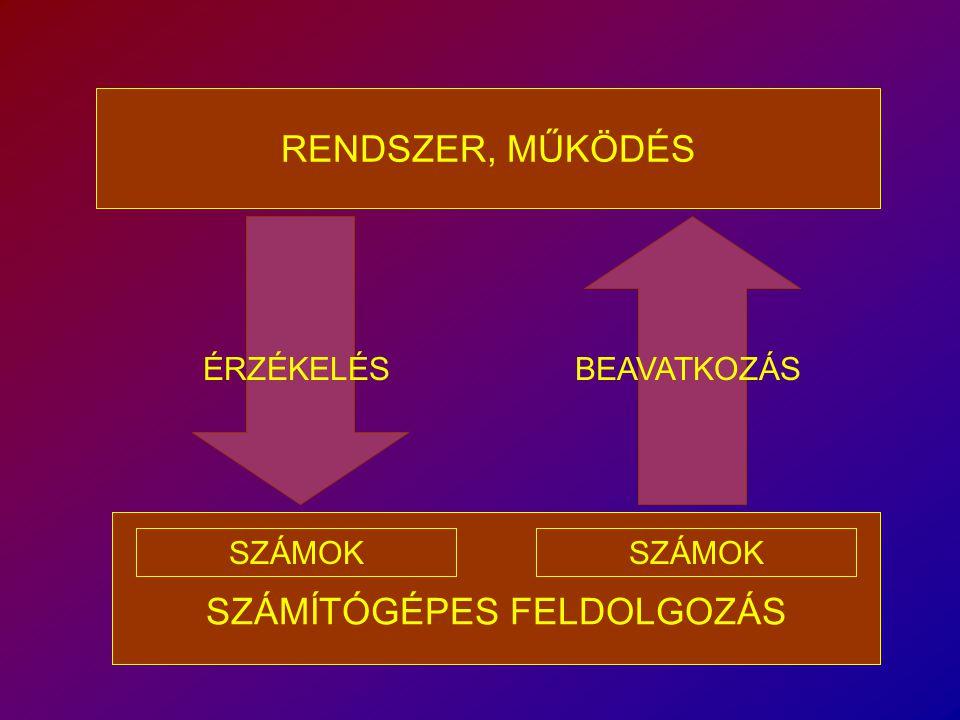 SZÁMÍTÓGÉPES FELDOLGOZÁS