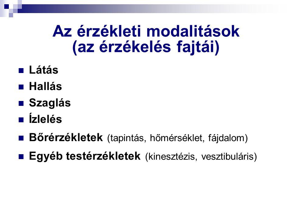 Az érzékleti modalitások (az érzékelés fajtái)