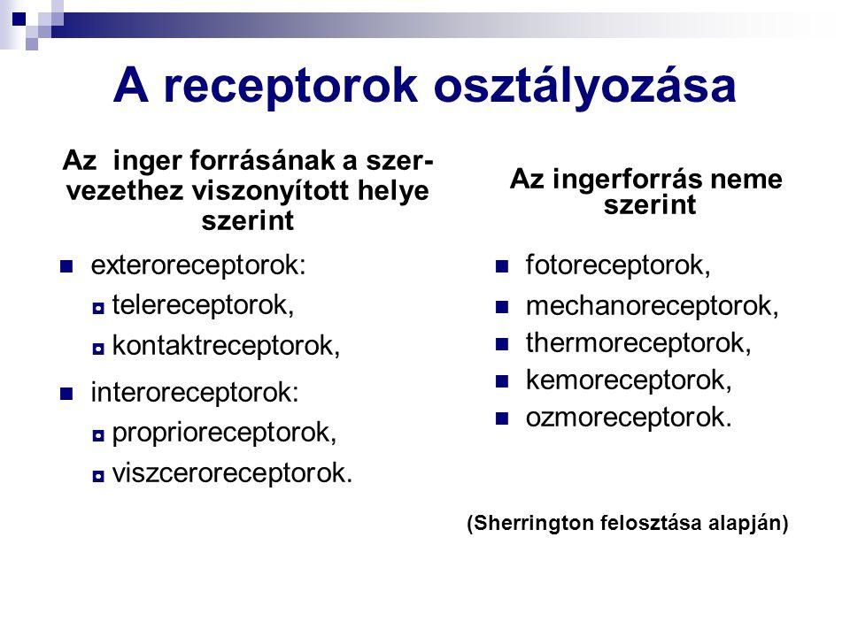 A receptorok osztályozása