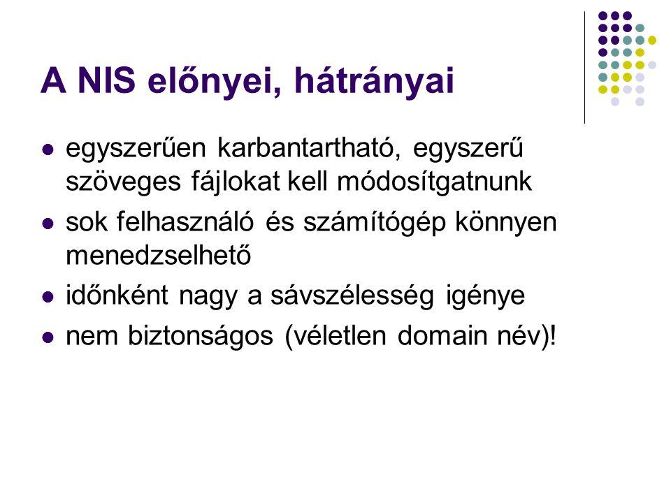 A NIS előnyei, hátrányai