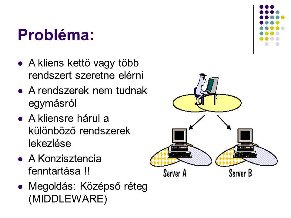Probléma: A kliens kettő vagy több rendszert szeretne elérni