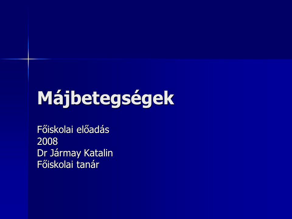 Főiskolai előadás 2008 Dr Jármay Katalin Főiskolai tanár