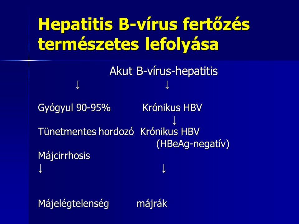 Hepatitis B-vírus fertőzés természetes lefolyása