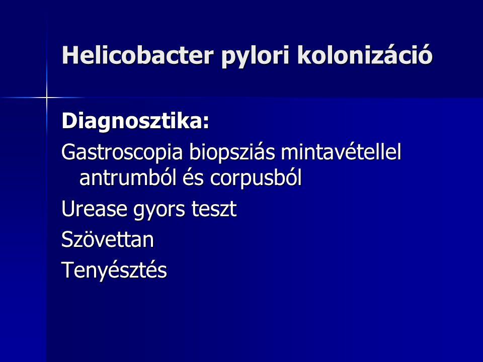 Helicobacter pylori kolonizáció