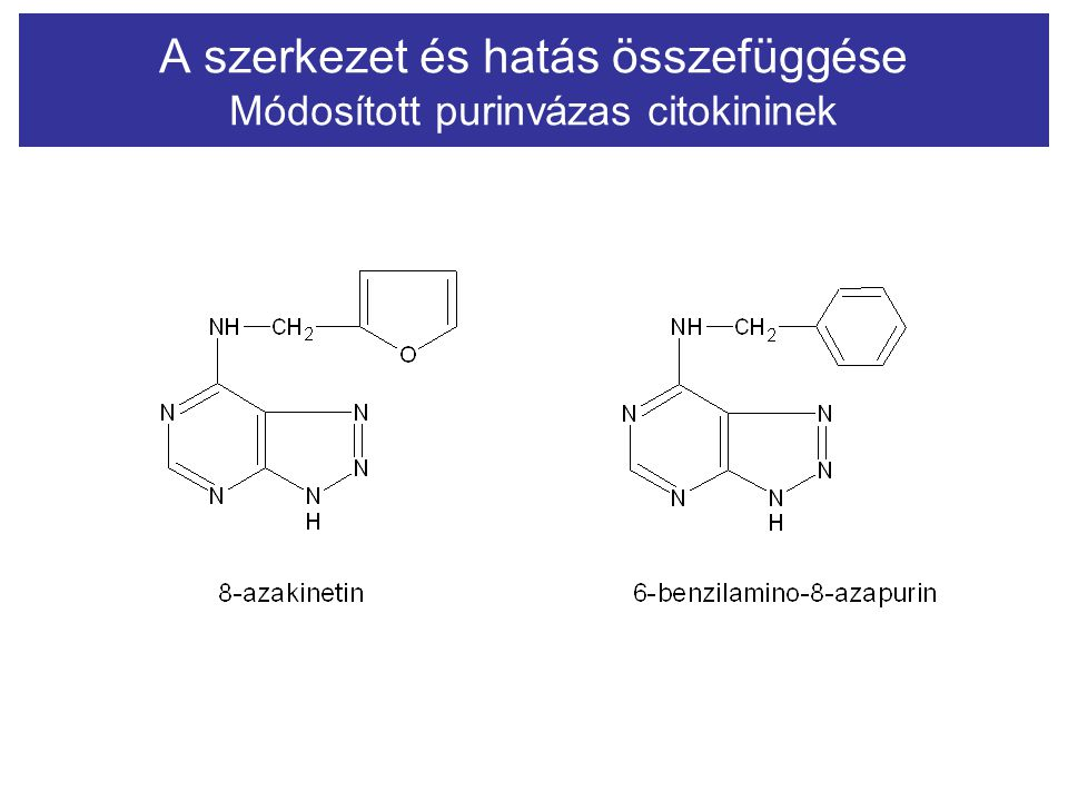 A szerkezet és hatás összefüggése Módosított purinvázas citokininek