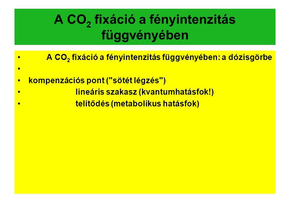 A CO2 fixáció a fényintenzitás függvényében