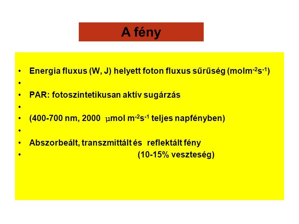 A fény Energia fluxus (W, J) helyett foton fluxus sűrűség (molm-2s-1)