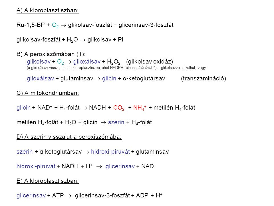 A) A kloroplasztiszban: