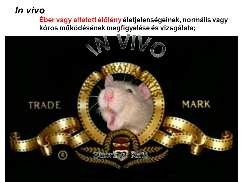IN VIVO In vivo Starring: Rats