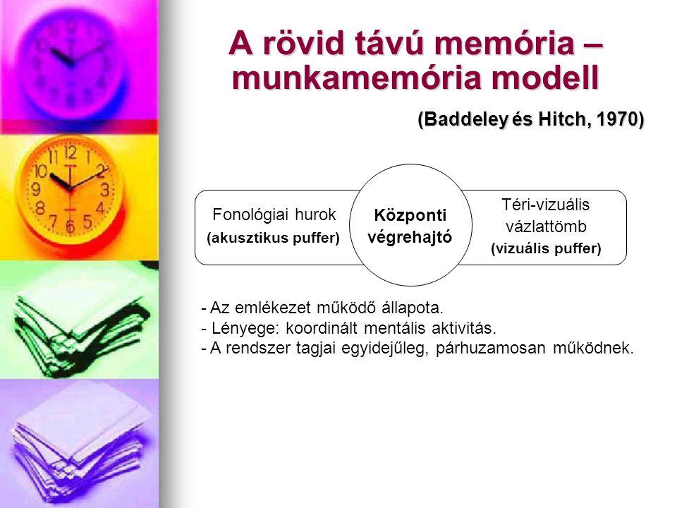 A rövid távú memória –munkamemória modell