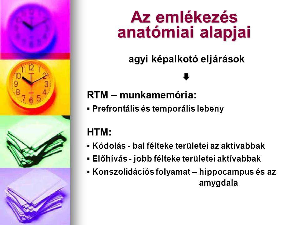 Az emlékezés anatómiai alapjai