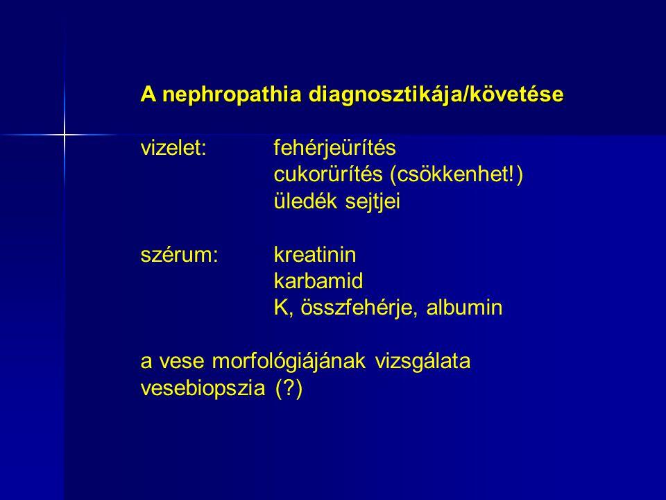 A nephropathia diagnosztikája/követése