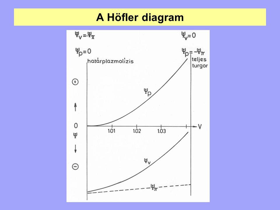 A Höfler diagram